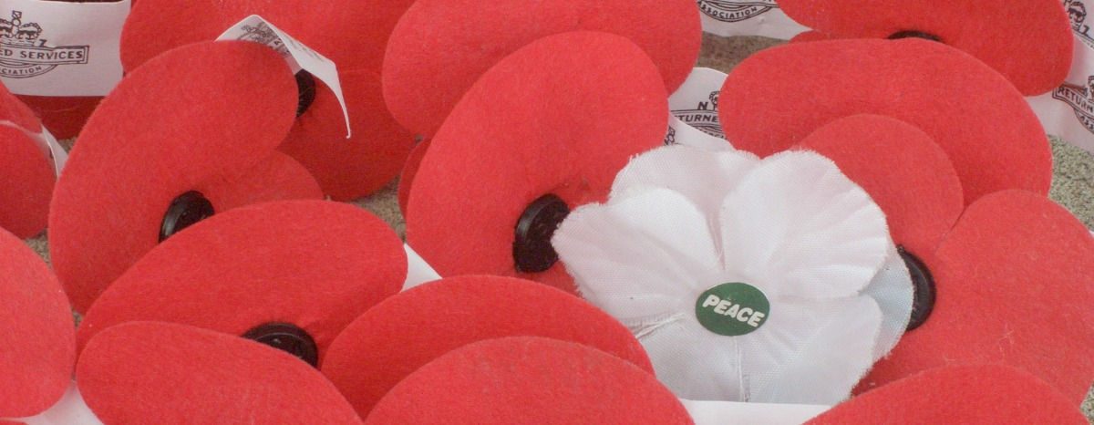 Anzac_poppies